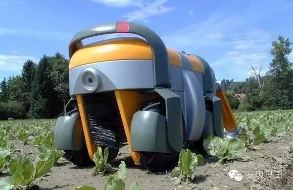 美国|蜜蜂机器人   这个蜜蜂机器人能够取代蜜蜂完成植物的授粉工作.